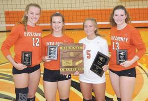 DCHS Volleyball Players Receive Awards